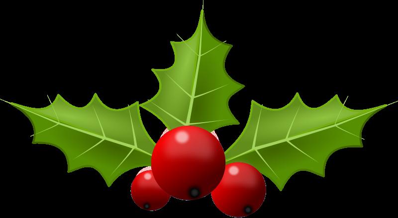800x439 Christmas Holly Clip Art 2