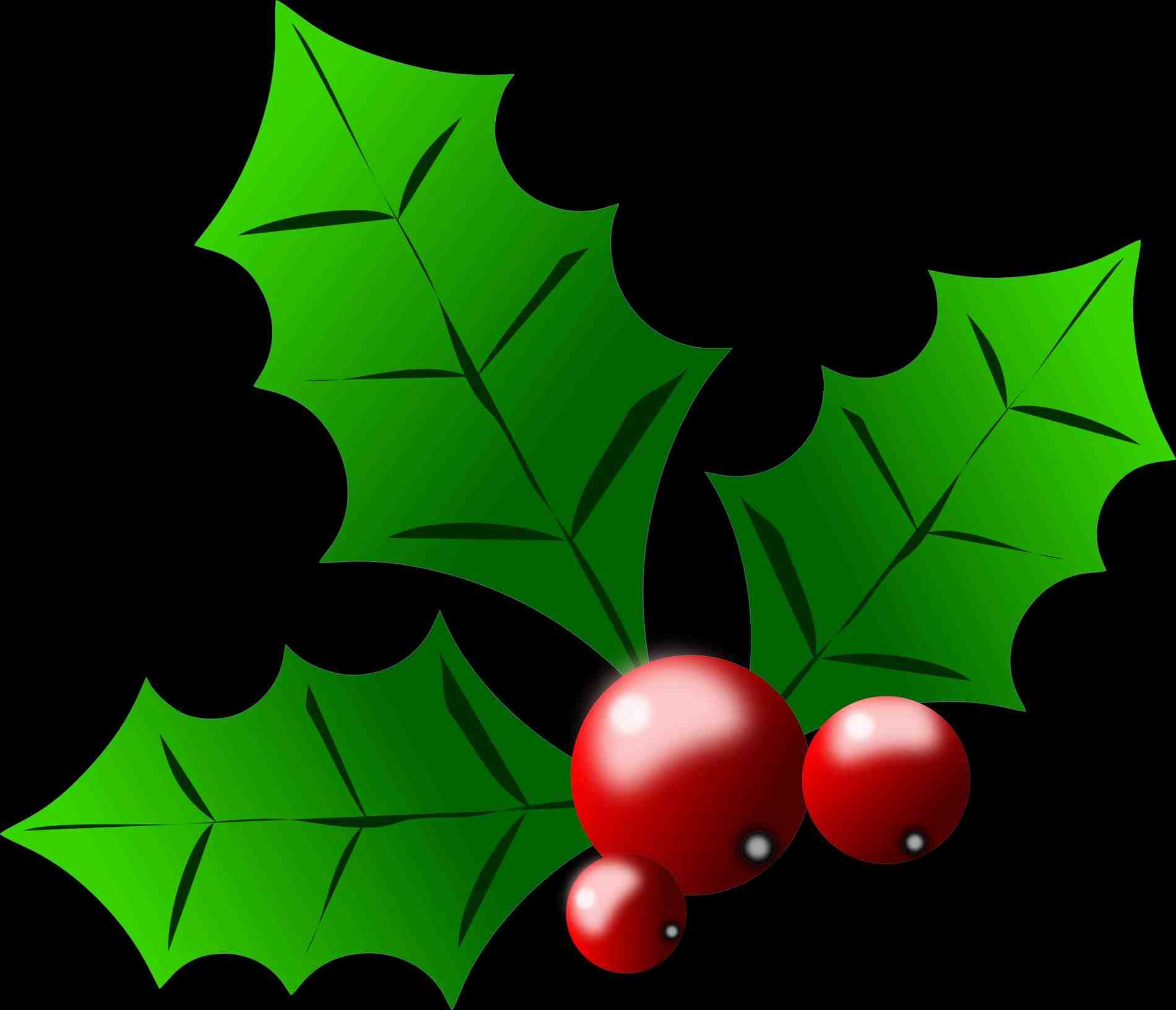 1900x1632 Free Christmas Holly Clip Art. Some Of This Months Most Viewed