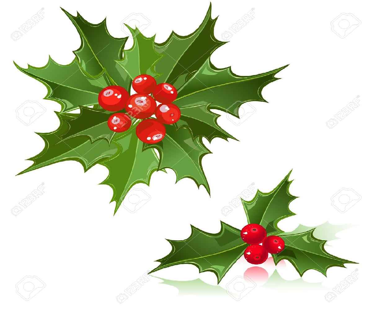 Holly Clipart Free
