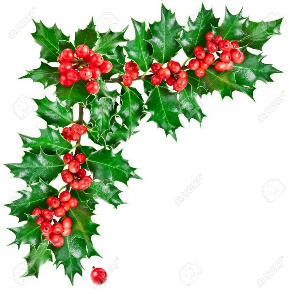 1024x1025 Christmas ~ Decorative Corner Withmas Holly Berries Stock Photo