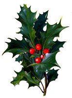 148x200 16 Best Holly Images Gift Ideas, Crafts And Drawings