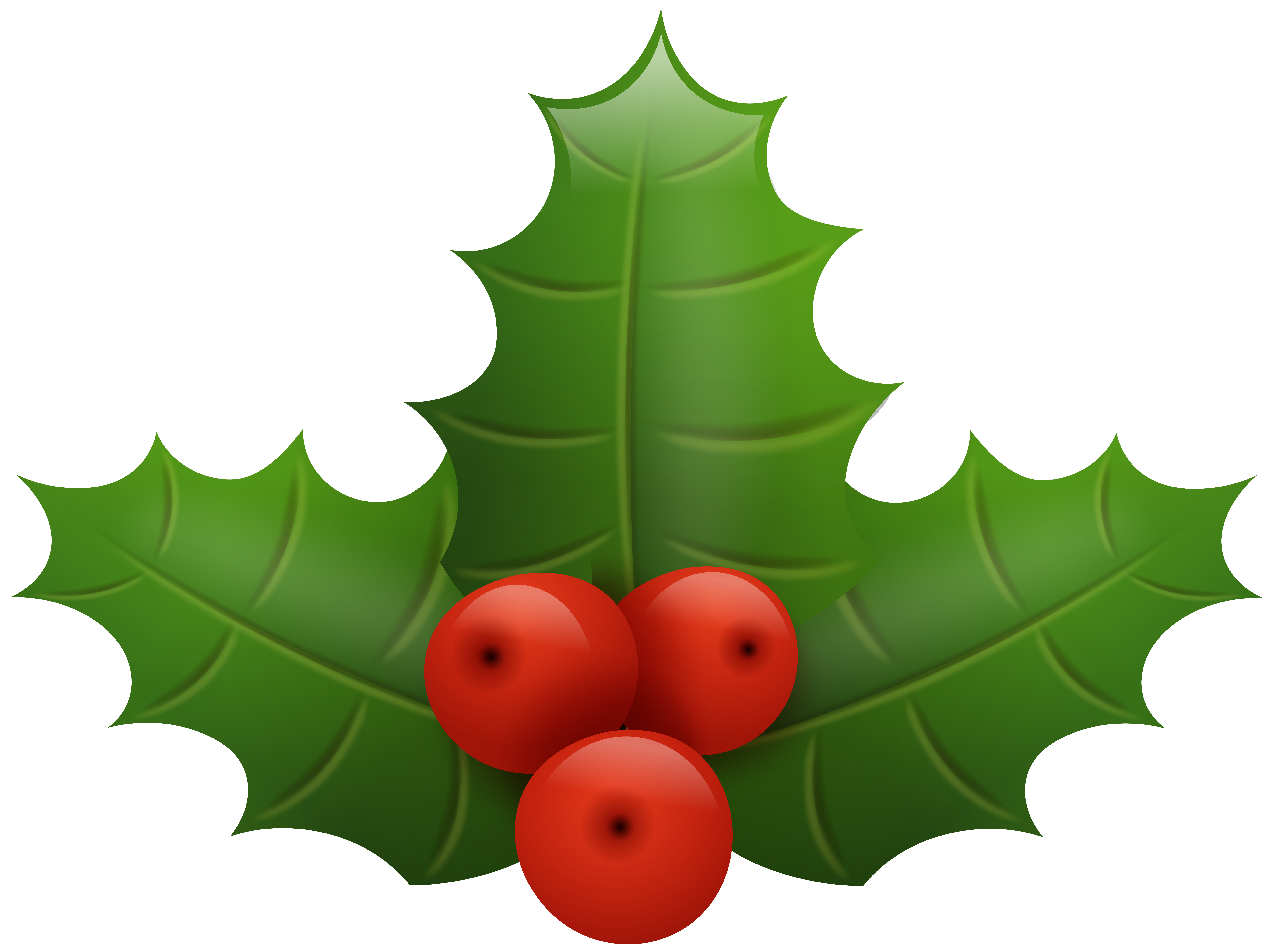8000x5984 Christmas Holly Png Clip Art Imageu200b Gallery Yopriceville
