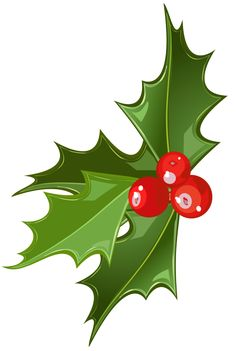 236x351 Holly And Mistletoe Clipart