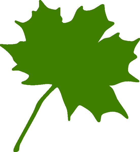 552x597 Green Leaf Clipart