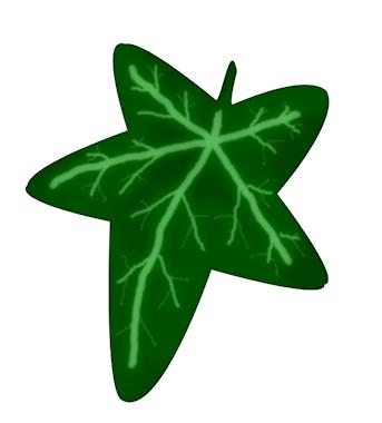 343x380 Ivy Leaf Clip Art