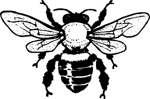 300x197 Honey Bee Clip Art