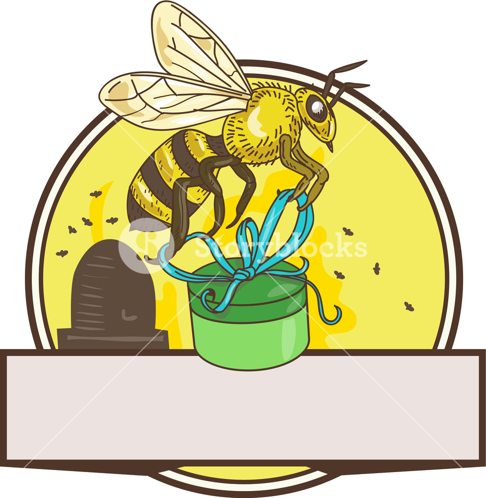 977x1000 Drawing Sketch Style Illustration Of Worker Honey Bee Carrying