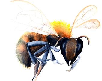 340x270 Honey Bee Painting Etsy