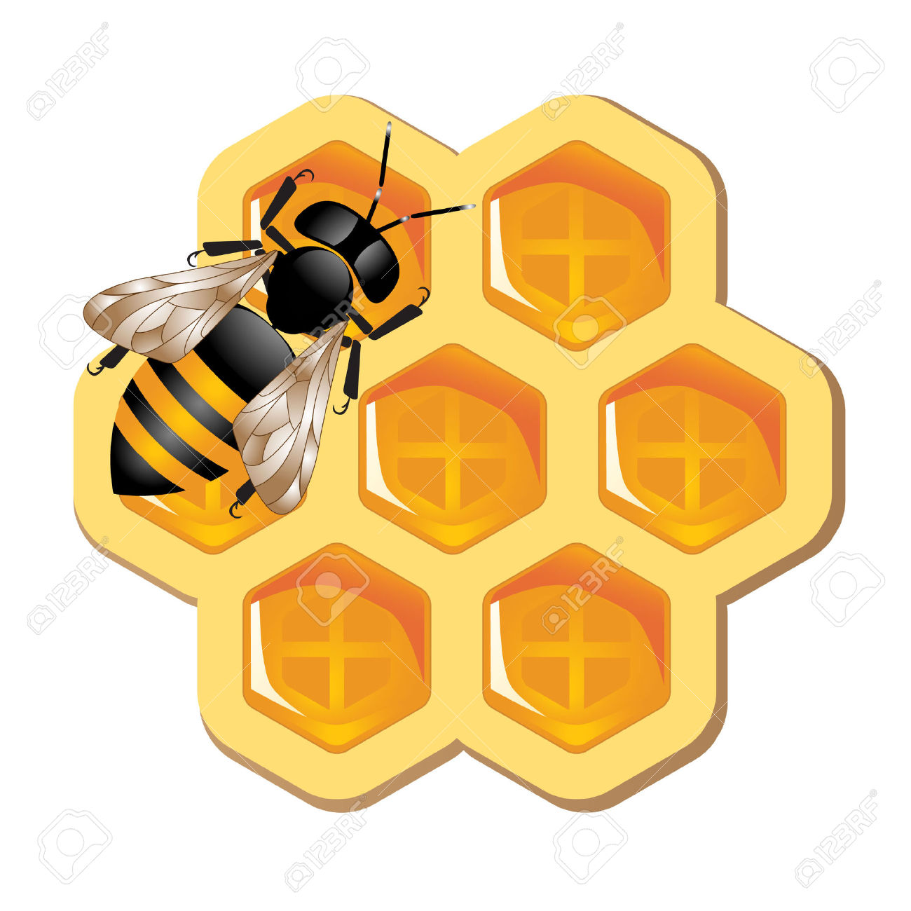 1300x1300 Bee Hive Clipart Honeycomb