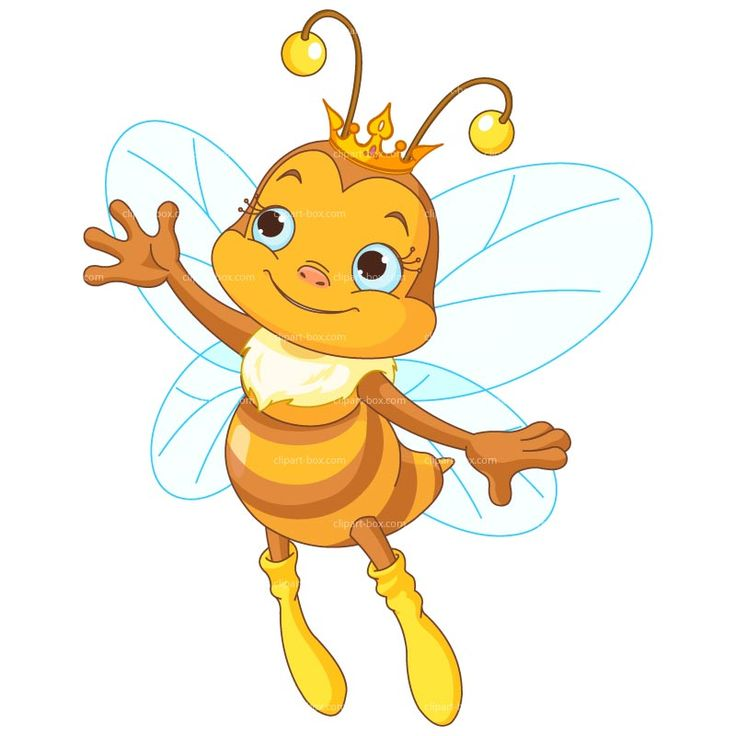 736x736 Bee Hive Clipart Queen Bee