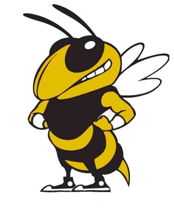 Hornet Clipart Mascots Free Download Best Hornet Clipart Mascots