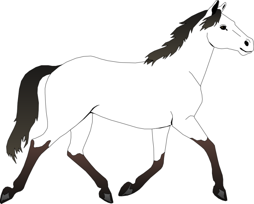 830x665 Horse Clipart Black And White