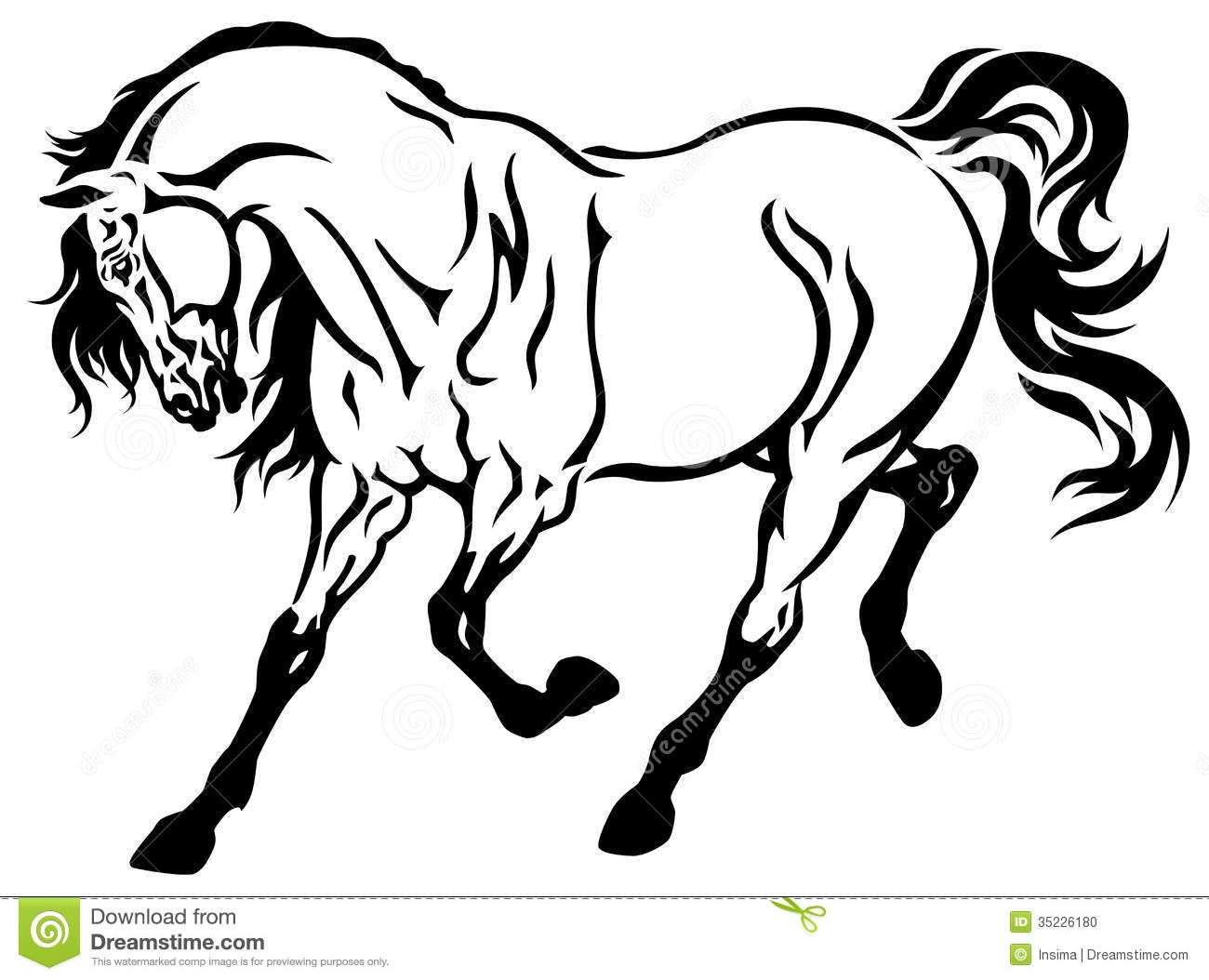 1300x1054 15 Black And White Horse Pictures Free Images Black And White