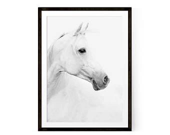 340x270 White Horse Print Etsy