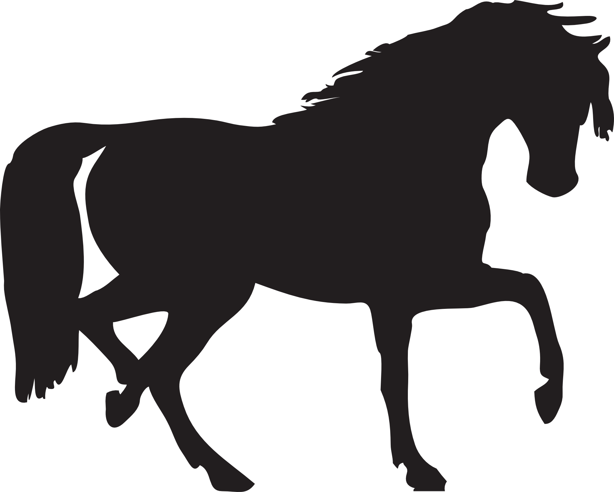 1969x1577 Foal Png Black And White Transparent Png Images. Pluspng
