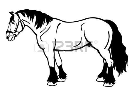 450x318 Jumping Horse,black And White Picture Isolated On White Background