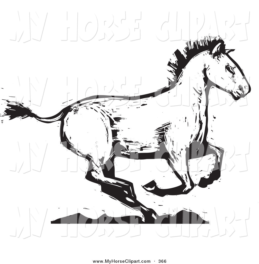 1024x1044 Royalty Free Black And White Stock Horse Designs