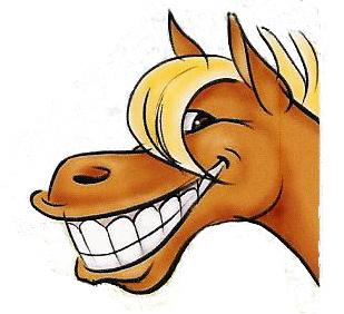309x282 Pix For Gt Cute Cartoon Horse Face Project Ideas