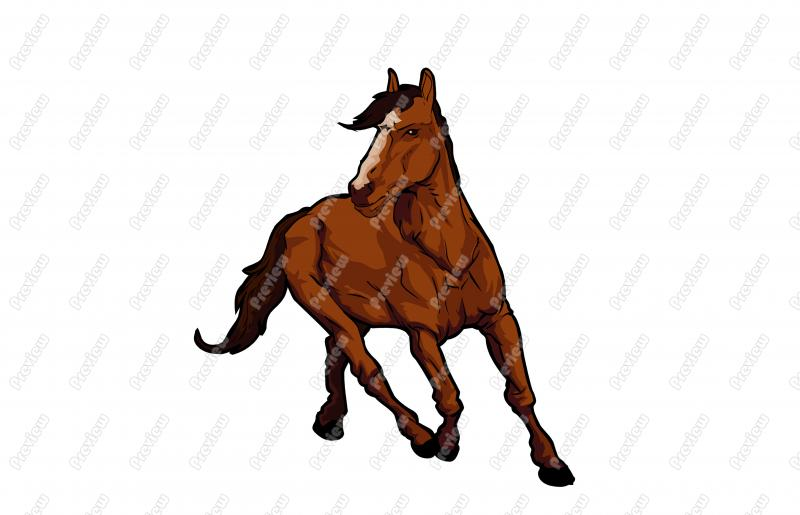 800x515 Realistic Horse Character Clip Art