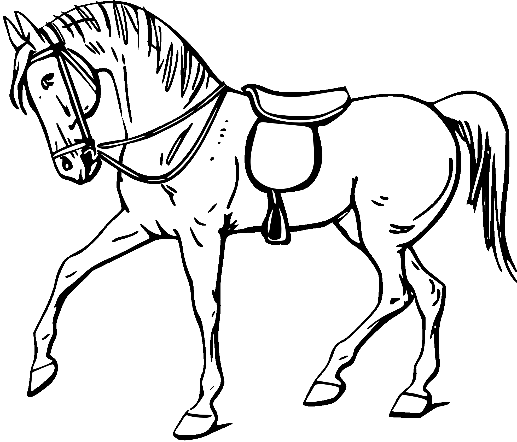 Horse Cartoon Clipart