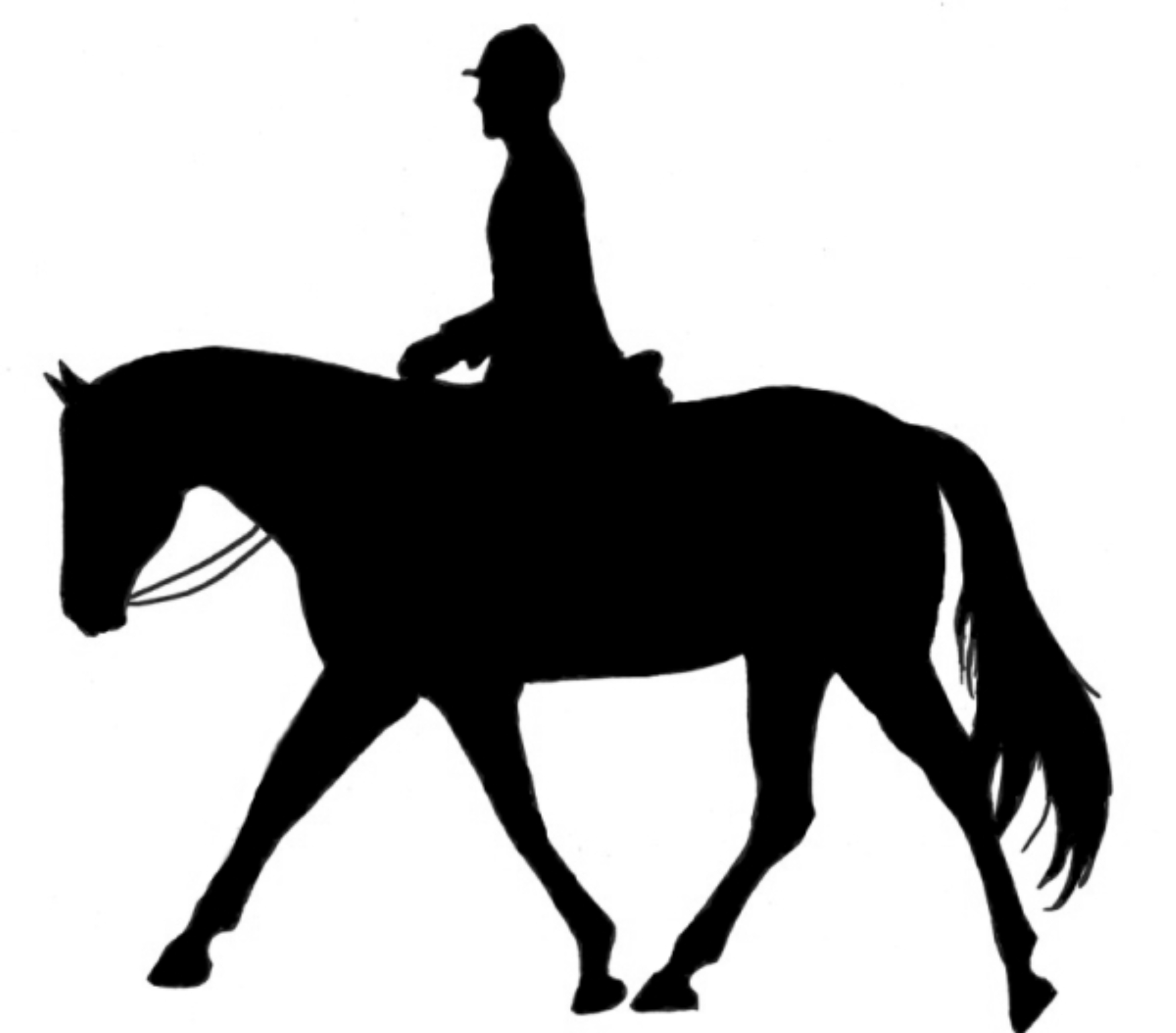 2000x1757 Horseback riding horse clipart