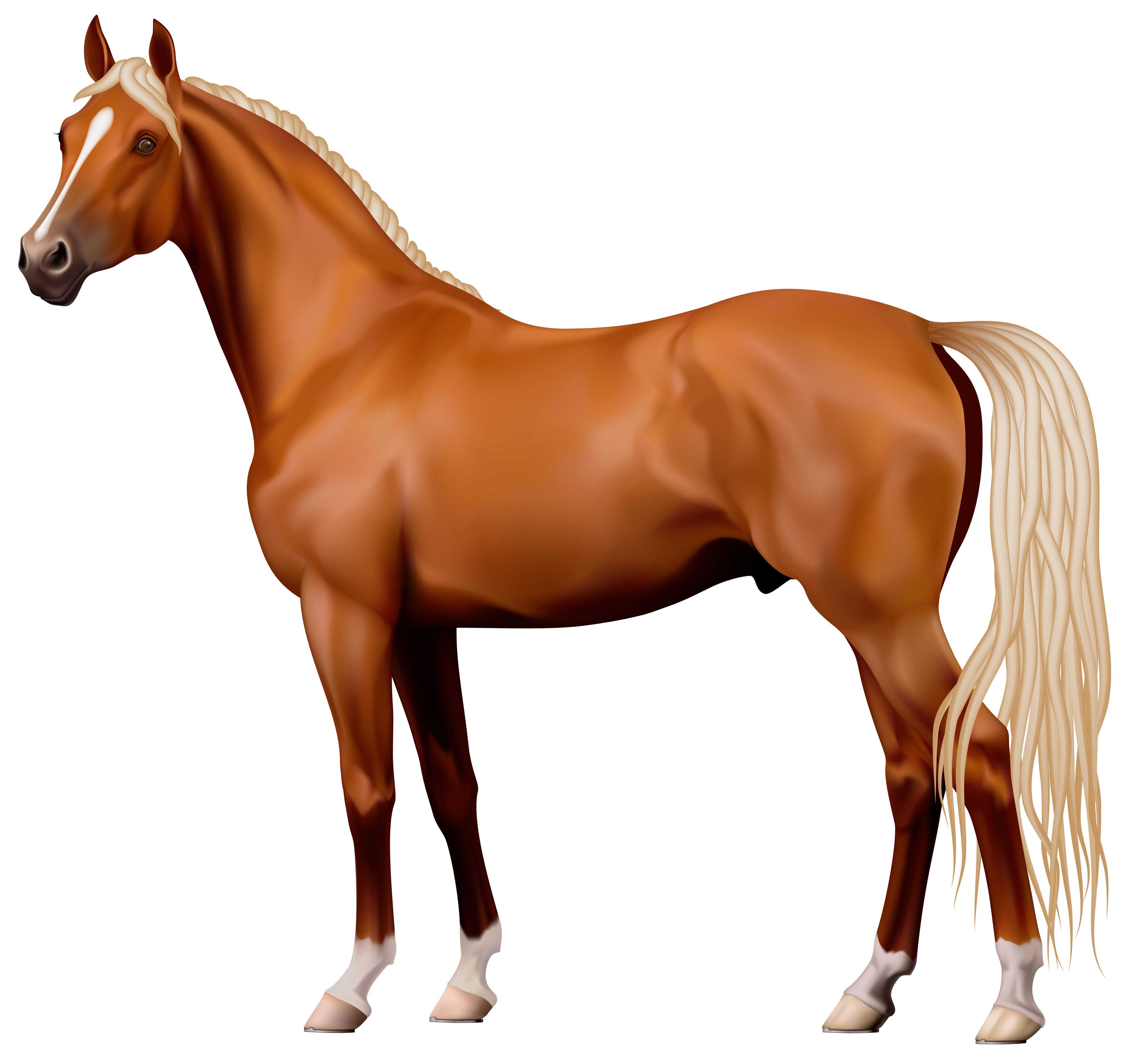 4120x3894 Brown Horse Png Clipart