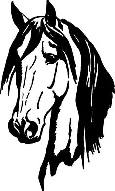 235x390 Horse Head Graphics