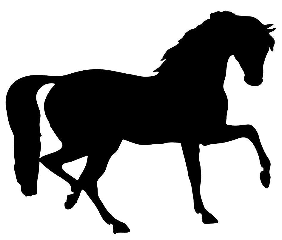 945x805 Image Of Horse