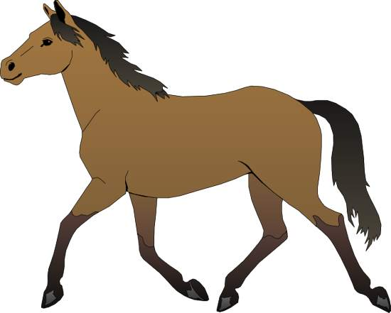 550x441 Horse Free Clipart Kid