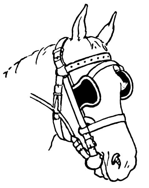 477x600 Free Horse Coloring Pages Clipart