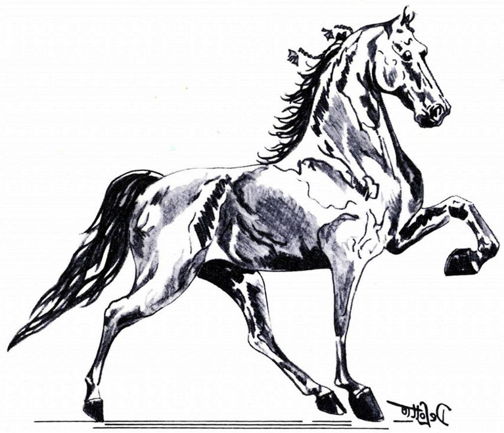 1024x880 Hd Tribal Running Horse Tattoo Sample Drawing