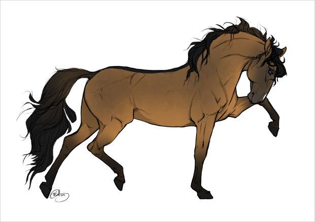 620x438 Beautiful Horse Drawings, Art Ideas Design Trends