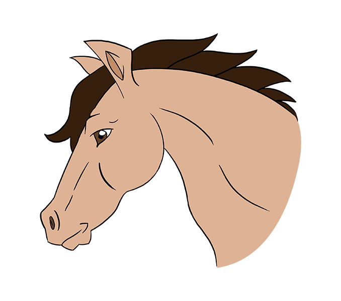 678x600 How To Draw A Horse's Head Easy Drawing Guides