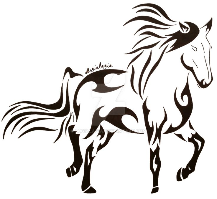 736x676 Best Horse Face Drawing Ideas Horse Drawing