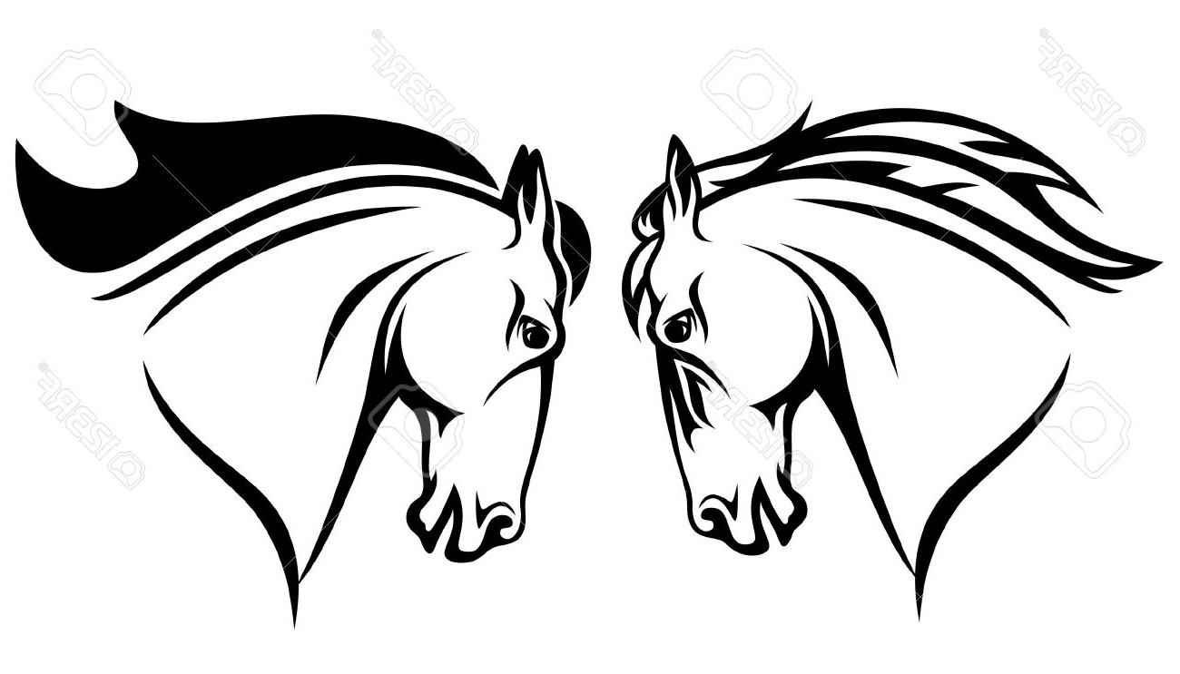 1300x743 Best Hd Horse Head Vector Design Black And White Outline Stock