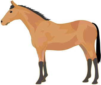 340x287 Clipart Horse Free Images
