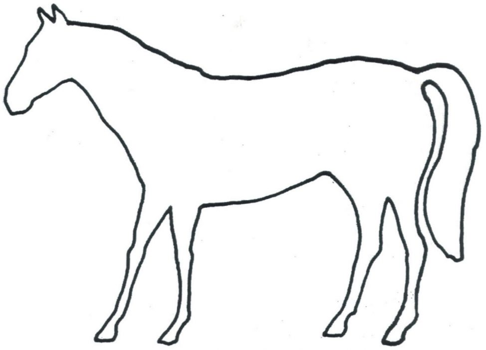 974x701 Coloring Pages Horse Outline Clip Art Md Coloring Pages Horse