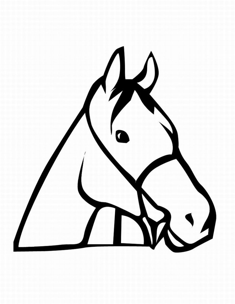 Horse Head Line Drawing | Free download best Horse Head Line Drawing ...
