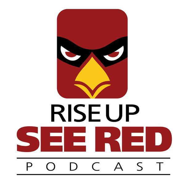 600x600 Aizona Cardinals Vs. Houston Texans Preseason Week 1 Preview 0806
