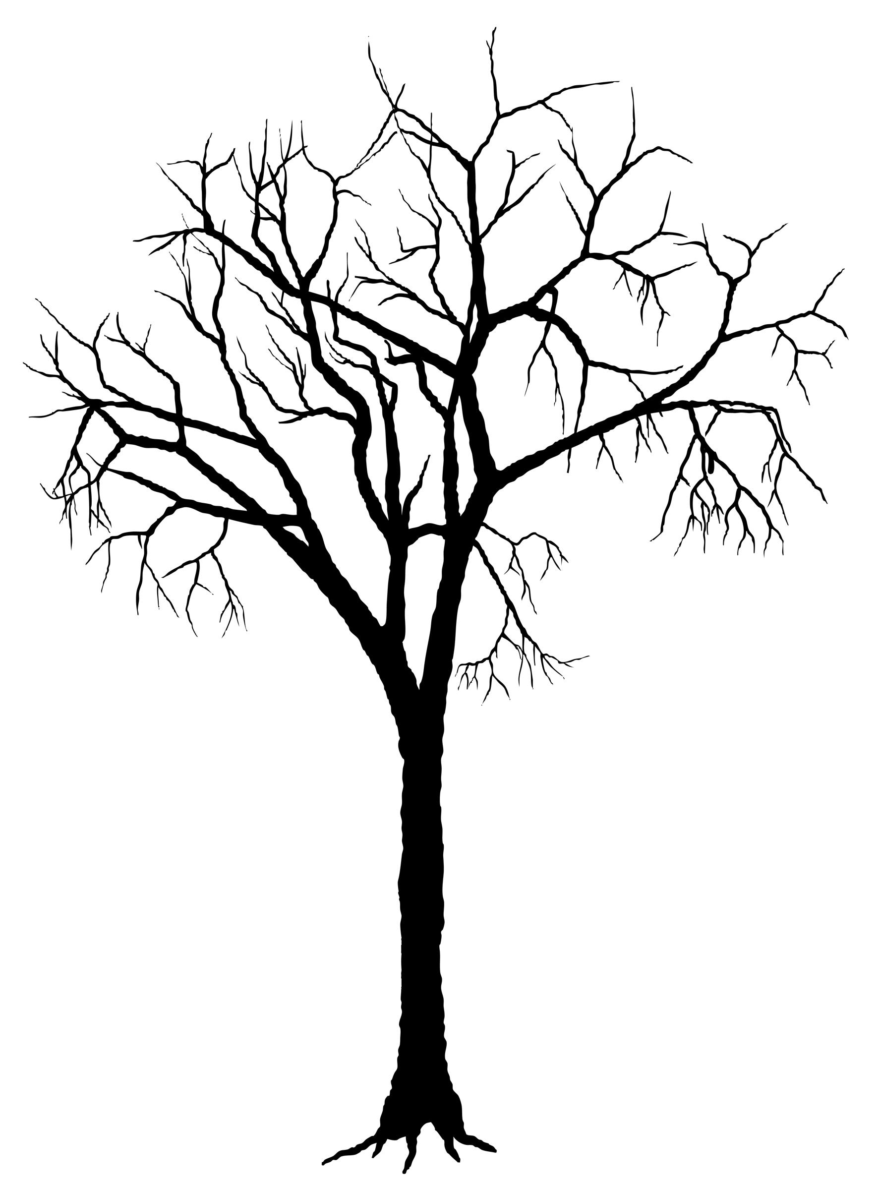 1771x2400 dead tree trunk clip art cliparts