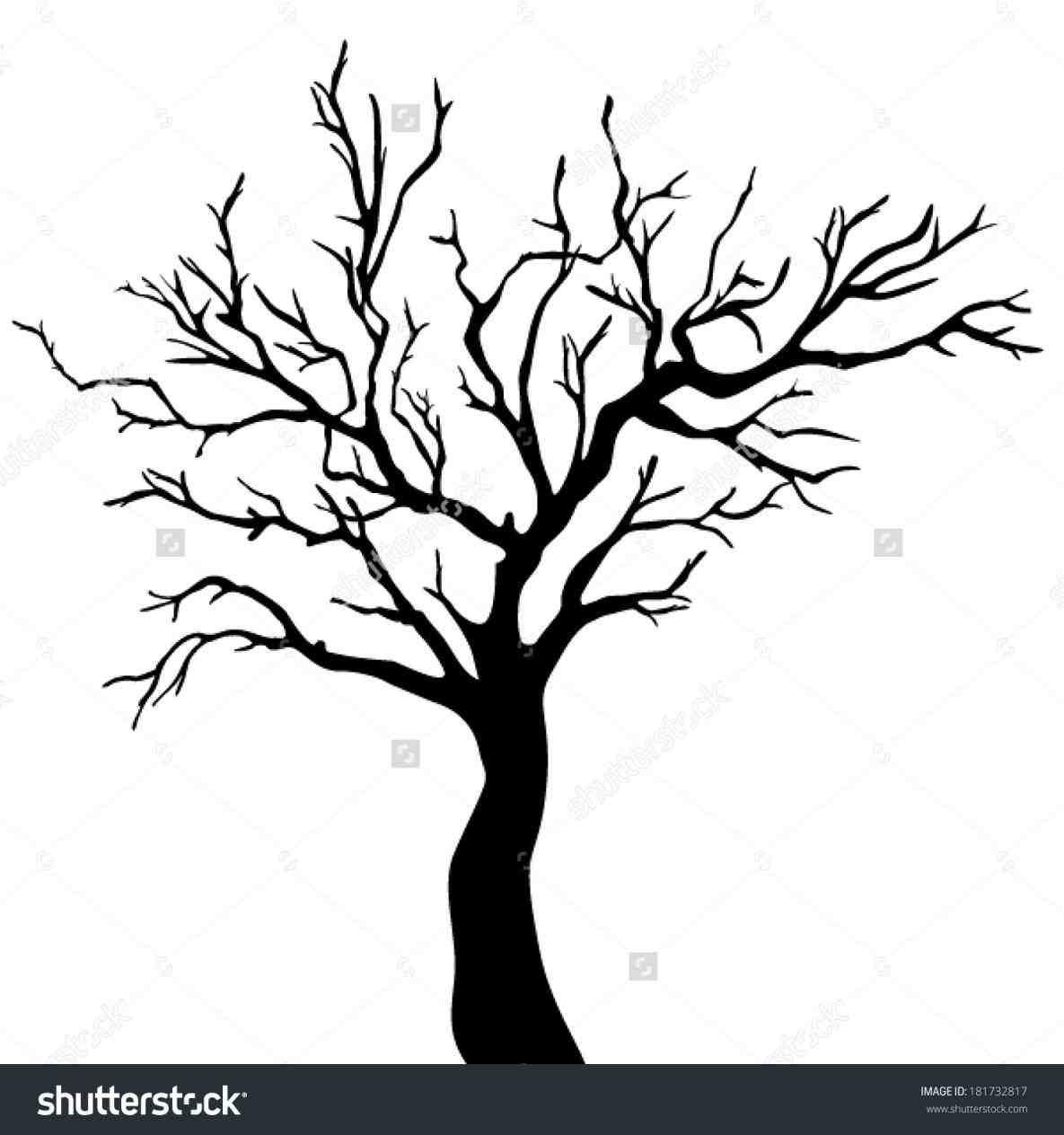1185x1264 Drawn Dead Tree