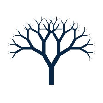 360x360 Drawn Dead Tree Easy