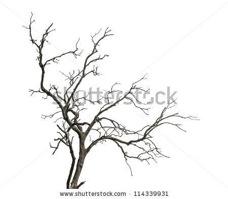 450x393 Drawn Tree Dead Tree