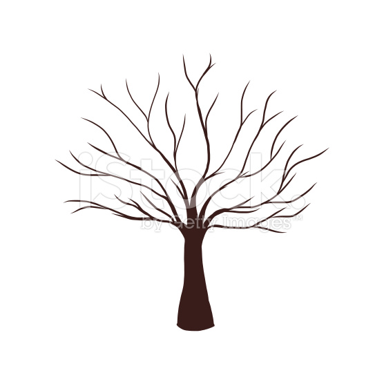 556x556 Tree Drawings Black And White Sillouette Tree Silhouette