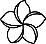 158x150 Gallery How To Draw A Hawaiian Flower,