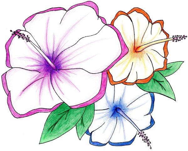 600x482 Hawaiian Projects To Try Hawaiian Flowers And Flowers