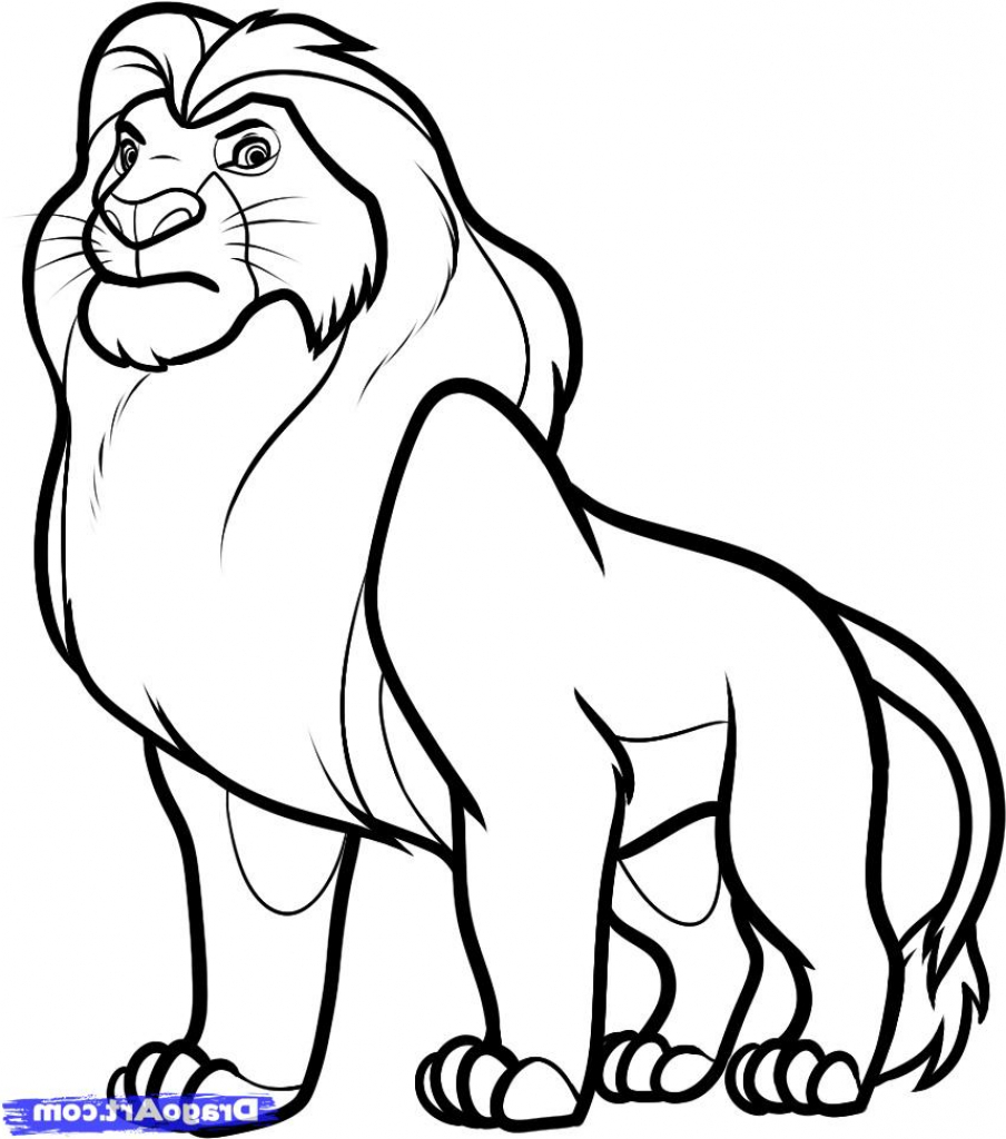 904x1024 Simple Drawing Of A Lion Lion How To Draw A Lion Easy Step Step