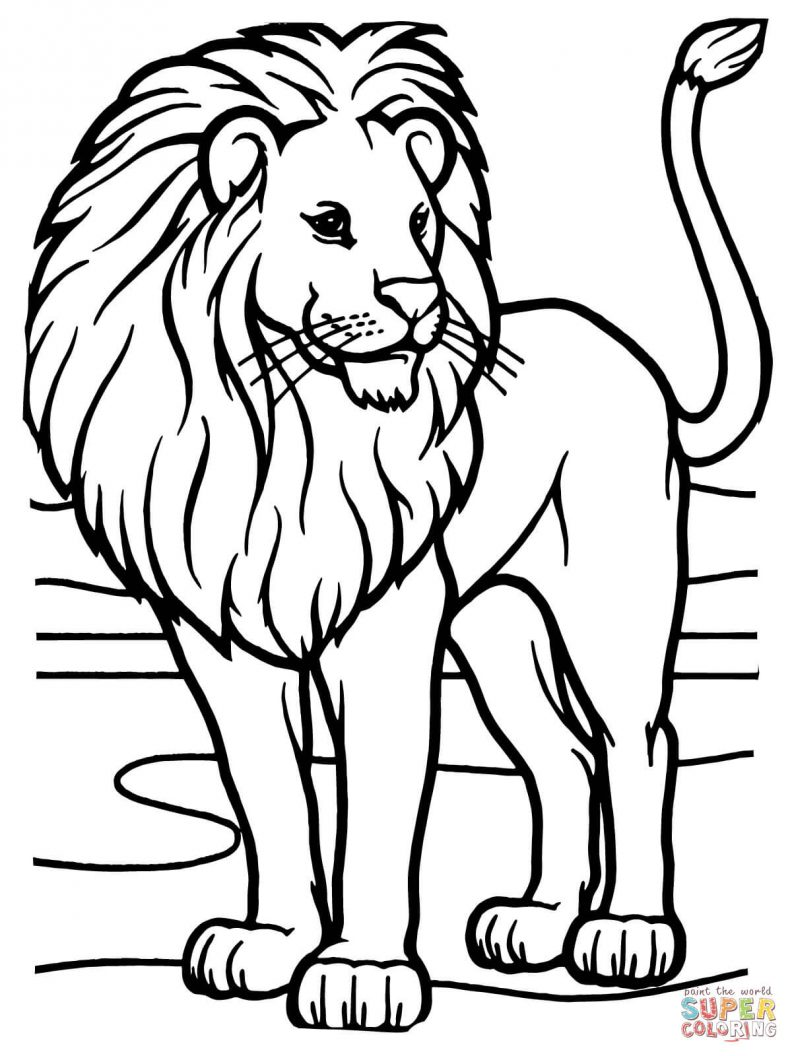 792x1056 Coloring Page Coloring Pages Draw A Lion For Kids Draw