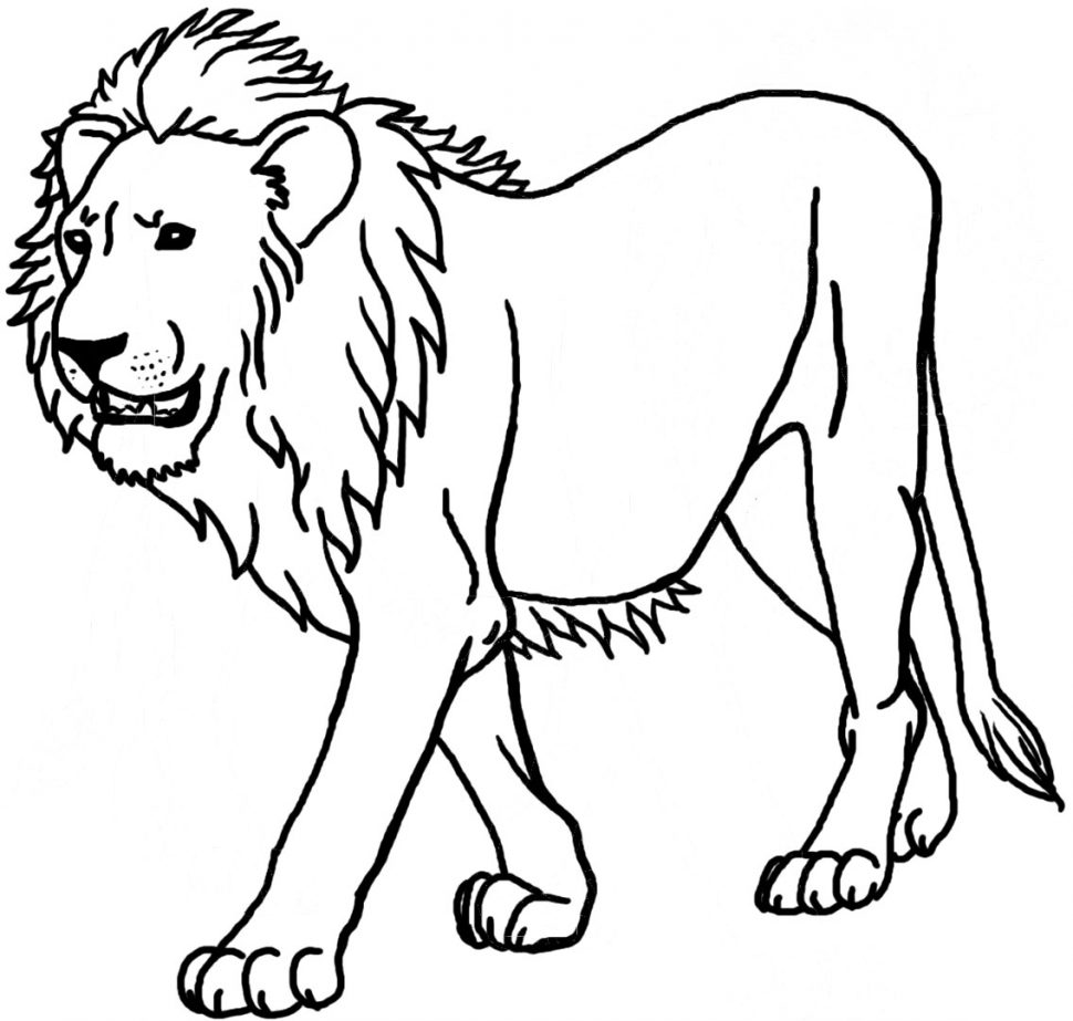970x923 Coloring Pages Graceful Coloring Pages Draw A Lion For Kids
