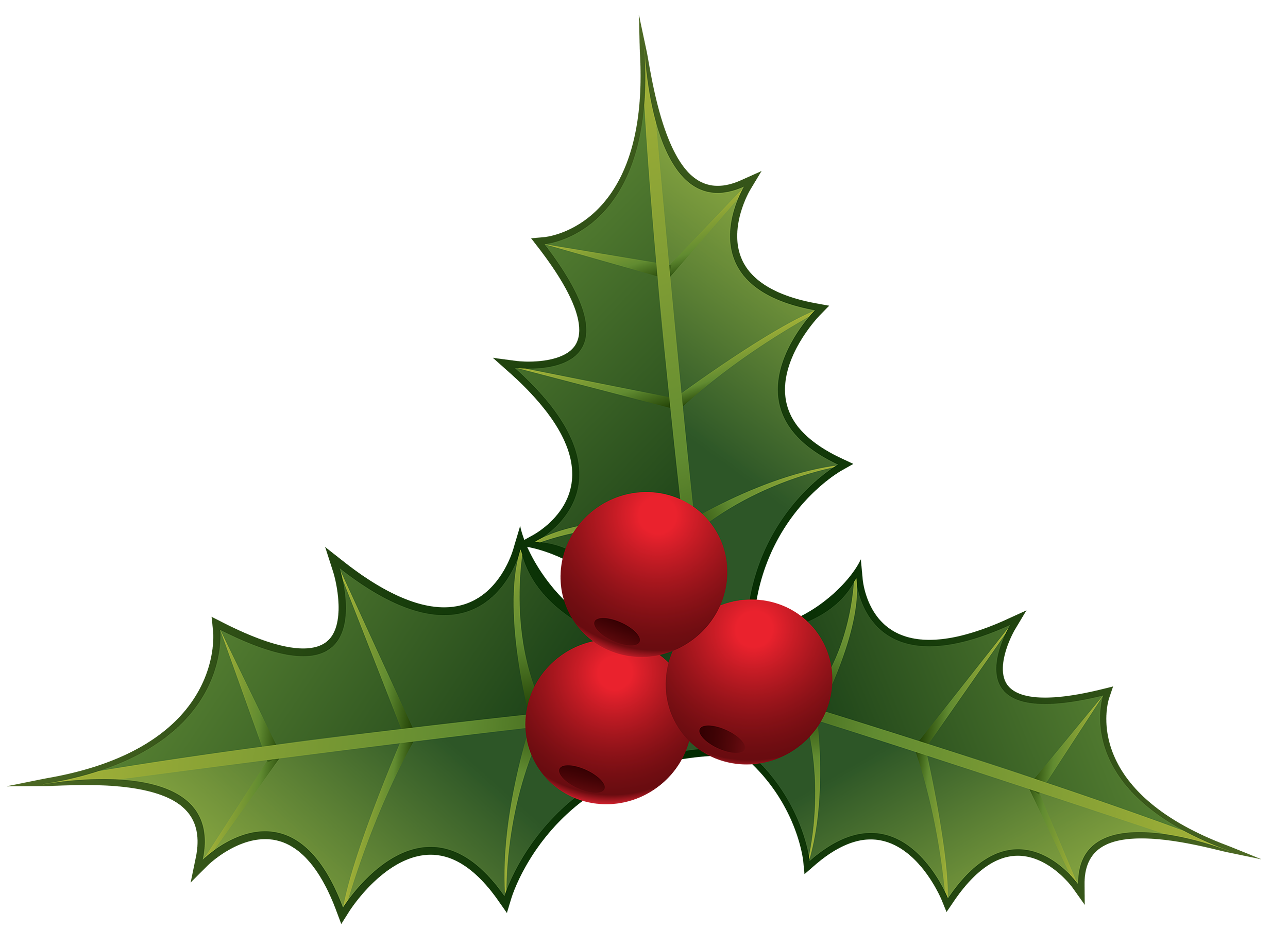 2500x1839 Mistletoe Clipart Transparent